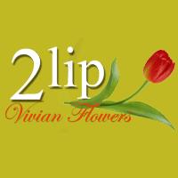 איינשטיין פרחים 2lip - תמונת לוגו