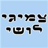 צמיגי לושי-תיקון ומכירה - תמונת לוגו