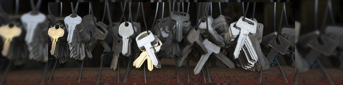 אלפרן מפצח המנעולים - תמונה ראשית