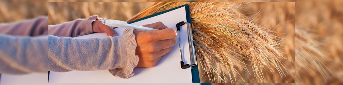 ברגר אהרון - יועץ גינון וחקלאות - תמונה ראשית