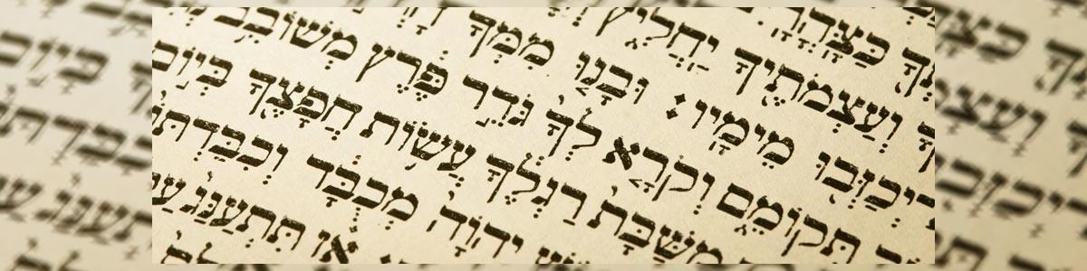 פרידמן תשמישי קדושה - תמונה ראשית