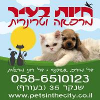 חיות בעיר מרפאה לחיות מחמד