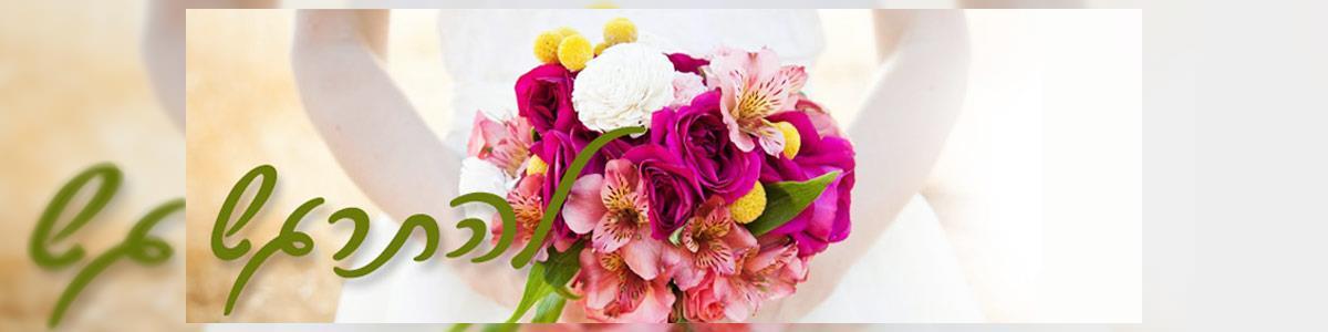 פרחי חן בשרון - תמונה ראשית