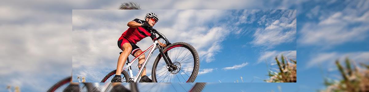 שלום אופניים - תמונה ראשית