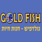גולד פיש - חנות חיות - תמונת לוגו