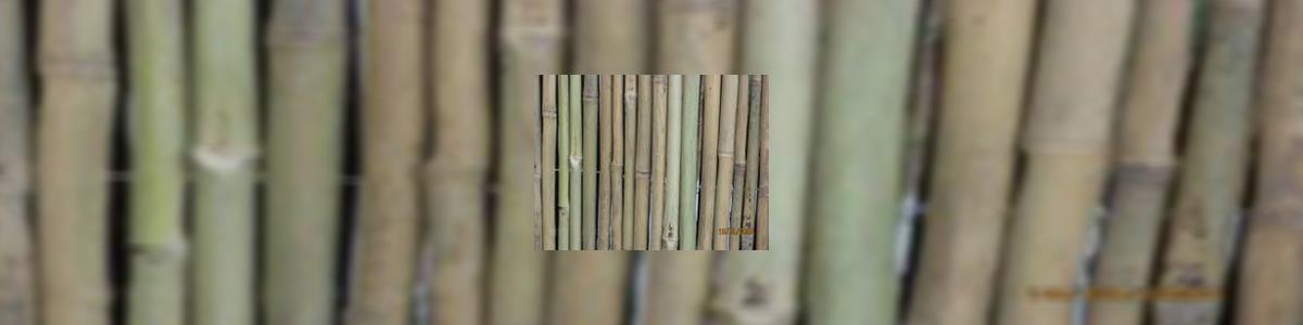 גדר במבוק - תמונה ראשית