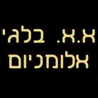 """א.א. בלגי אלומניום בע""""מ"""