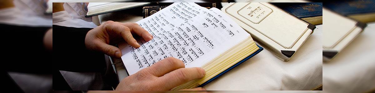הרב שאול דוד בורשטיין - תמונה ראשית