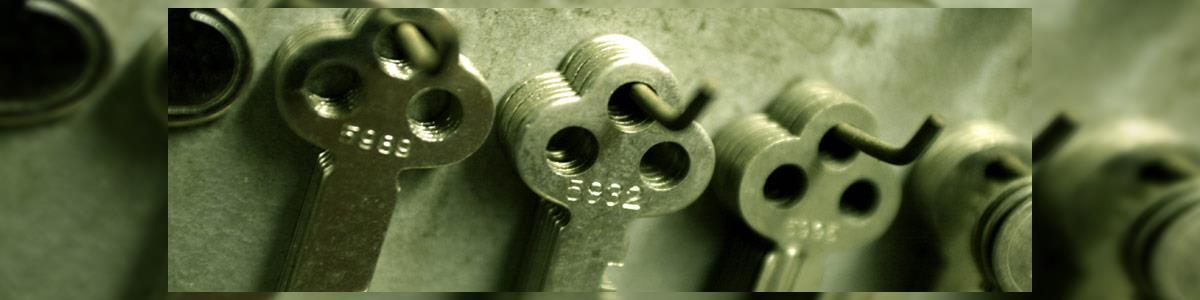 מפתח בשרון - תמונה ראשית