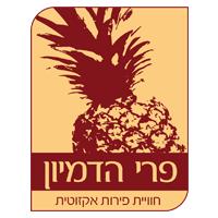 """פרי הדמיון (ישראל) בע""""מ"""