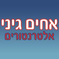אלטרנטורים אחים גיני - תמונת לוגו