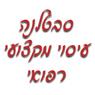 סבטלנה עיסוי מקצועי רפואי - תמונת לוגו