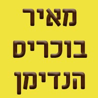 מאיר בוכריס  - הנדימן
