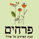 חנות הפרחים של אורלי - תמונת לוגו