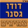 דודו גסנר צמיגים - תמונת לוגו