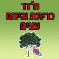 ח'דר- כריתת וגיזום עצים - תמונת לוגו