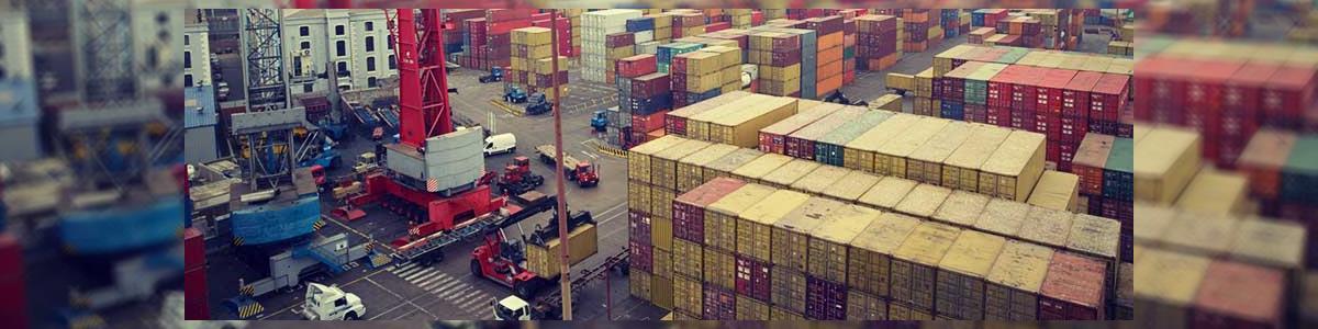 חי צדקה hs shipping - תמונה ראשית