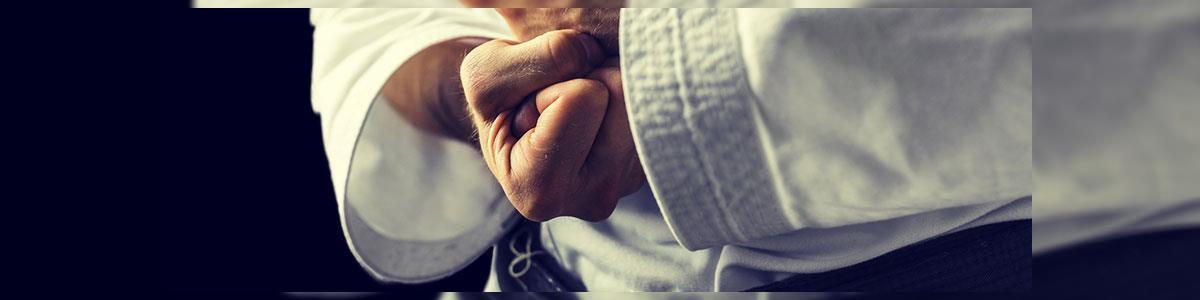 קיקבוקס מגע מלא - תמונה ראשית