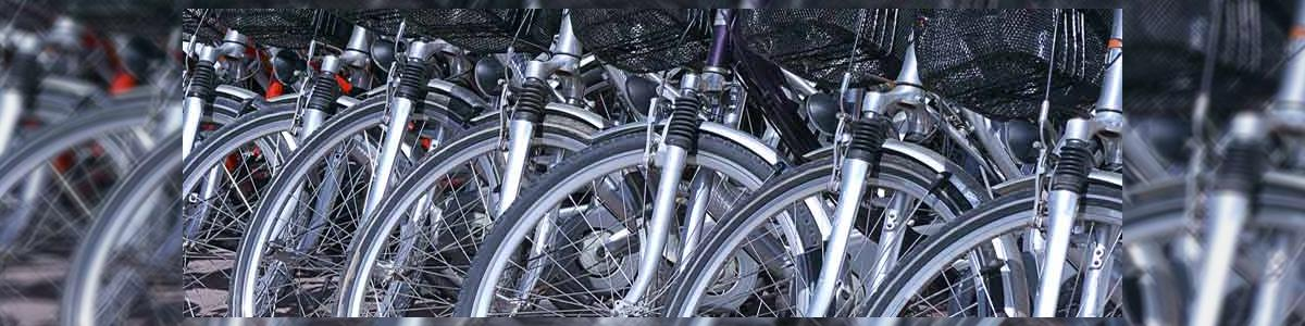 אופני המושבה - תמונה ראשית