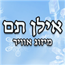 אילן תם-מיזוג אוויר - תמונת לוגו