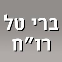 """ברי טל רו""""ח - תמונת לוגו"""