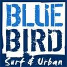 בלו בירד Blue Bird