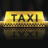 נהגת מונית טל - בירן
