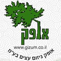 """""""אופק"""" - כריתה וגיזום בתל אביב"""