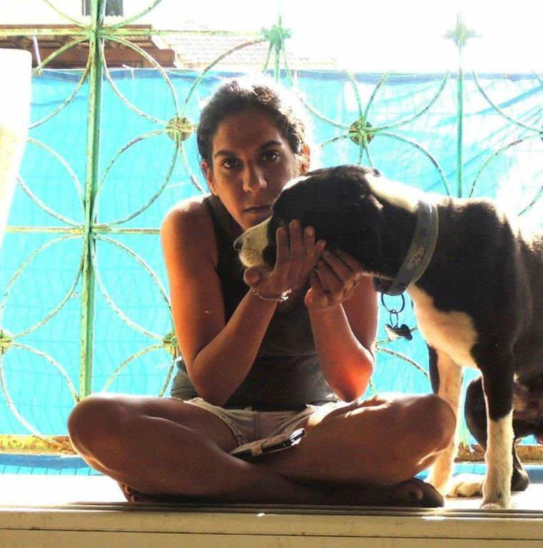 ג'וי-דוג פנסיון לכלבים ביתי