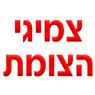 צמיגי הצומת - תמונת לוגו