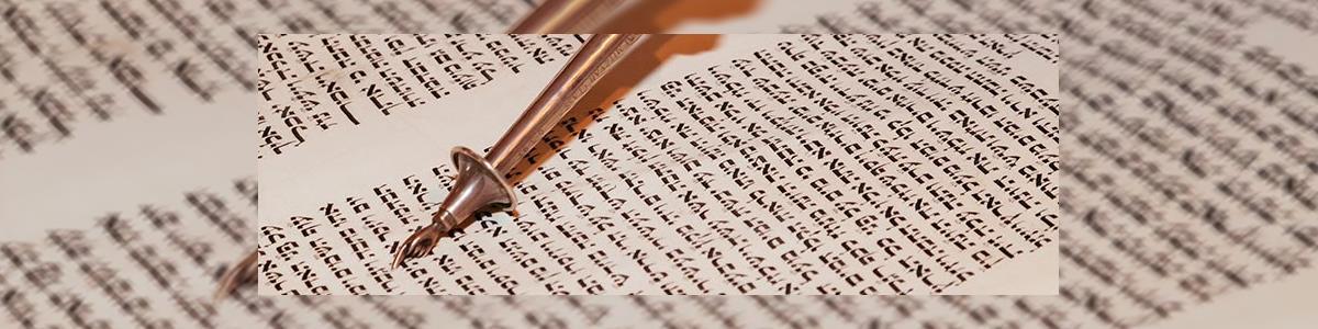 מהדרין-תשמישי קדושה - תמונה ראשית