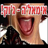 """אמאל'ה ג'וק וד""""ר עכבר"""