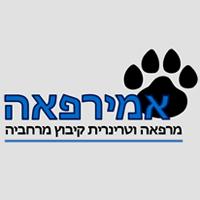 """אמירפאה - ד""""ר אמיר הלפרין"""