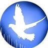 מיכאל-הרחקת יונים - תמונת לוגו