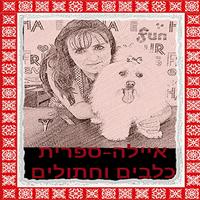 איילה - ספרית כלבים