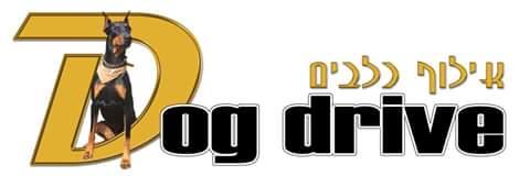 Dog Drive אילוף כלבים
