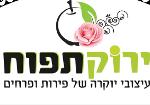ירוק תפוח - פרחים ומגשי פירות - תמונת לוגו