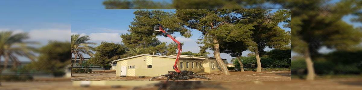 א. אליהו גיזום והעתקת עצים - תמונה ראשית