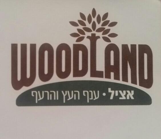 ווד-לנד woodland