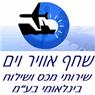 """שחף אוויר וים שרותי מכס ושילוח בינלאומי בע""""מ בירושלים"""