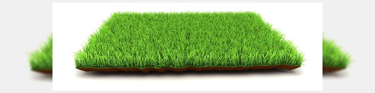 דשא סינטטי ירוק תמיד - תמונה ראשית