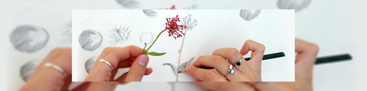 רבקה נמר- לימודי ציור על עץ - תמונה ראשית
