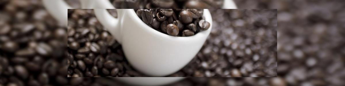 קפה בסתת BASTET - תמונה ראשית
