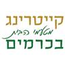 קייטרינג מטעמי הבית בכרמים - תמונת לוגו