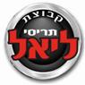 קבוצת תריסי ליאל - תמונת לוגו