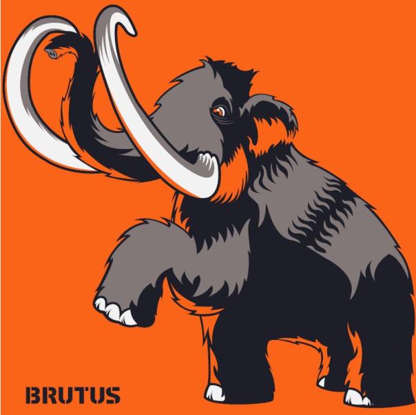 """ברוטוס הנדסה בע""""מ - תמונת לוגו"""