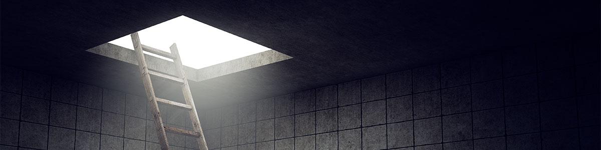 מחבואים באפלה Hidenseek - תמונה ראשית