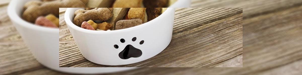 בון פט bon pet - תמונה ראשית