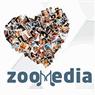 זומדיה - Zoomedia בנתניה