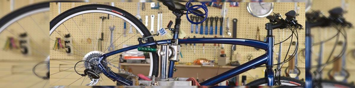 כל בו אופניים נח - תמונה ראשית